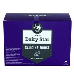 Dairy Star Sallicine Boost Bolus