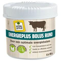 ECOstyle EnergiePlus Bolus - 6 x 95 gram