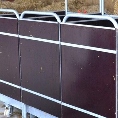 Spinder Basisbox 82 Cm - Inclusief Emmer en Voederschaal